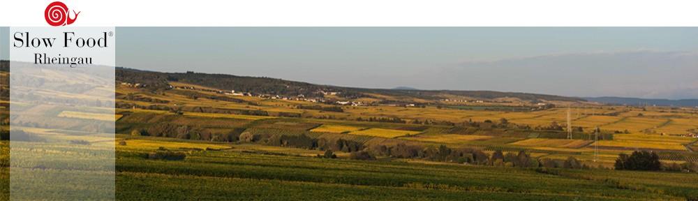 2018_©Rheingau_region_as_seen_from_Schloss_Johannisberg_20131027_1